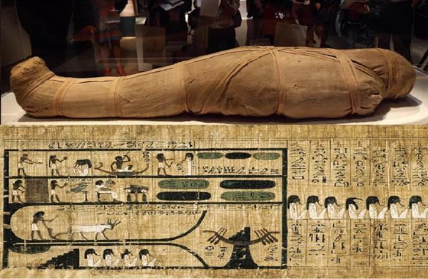 دراسة أجنبية ;نسيج مصر القديمة; احتفظ بميزات ميكانيكية لافتة لآلاف السنين