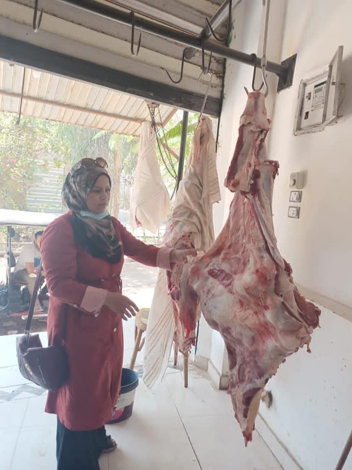 بيطري الدقهلية تحرر 10 محاضر وتضبط 350 كيلو لحوم لذبحها خارج السلخانة في منية النصر