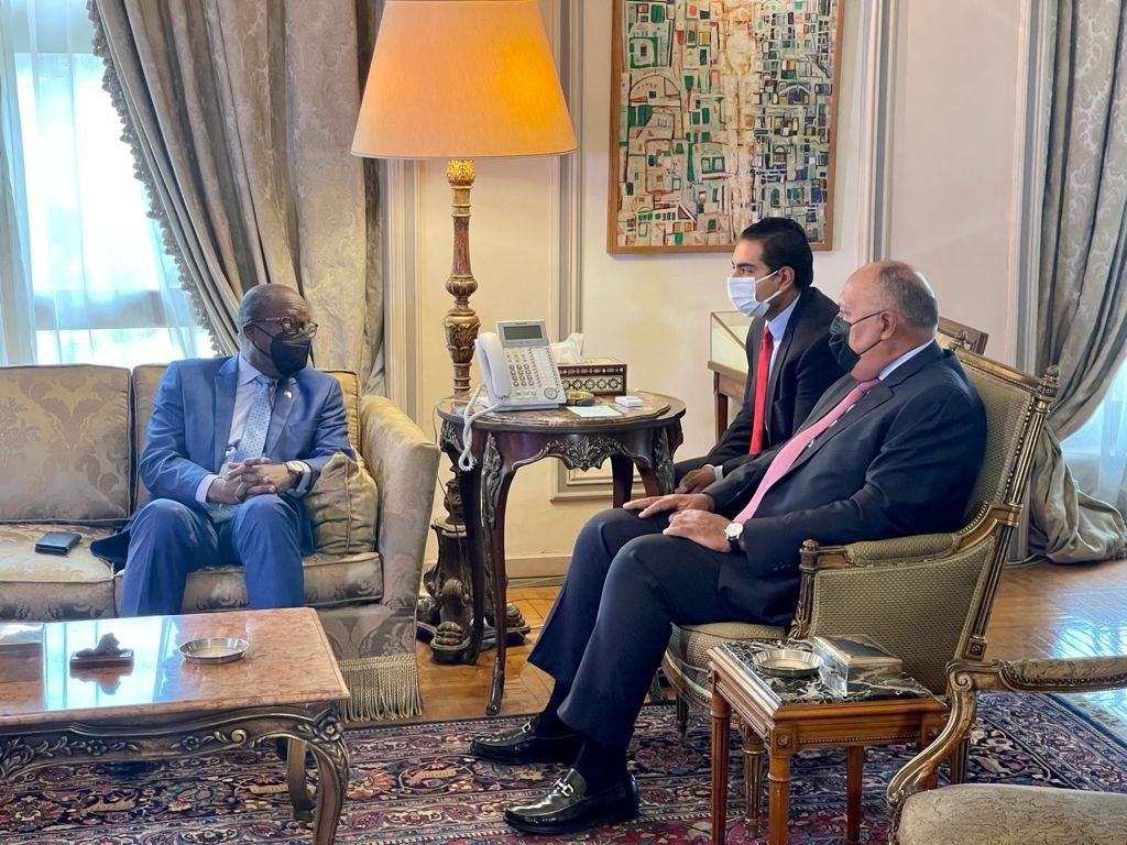 اجتماع وزير الخارجية مع نائب رئيس وزراء الكونغو