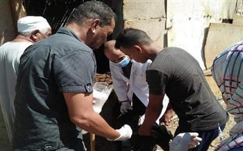 حملة-بيطرية-لتحصين-الحيوانات-ضد-طاعون-المجترات-بمدينة-القصير-|-صور