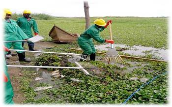 تحويل-الحشائش-إلى-طاقة-الغاز-الحيوي-وحصاد-مياه-الأمطار-مشروعات-مصرية-للتنمية-فى-أوغندا صور