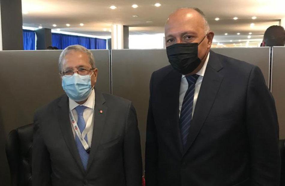 شكري يبحث مع وزير خارجية تونس سبل تعزيز آليات العمل العربي
