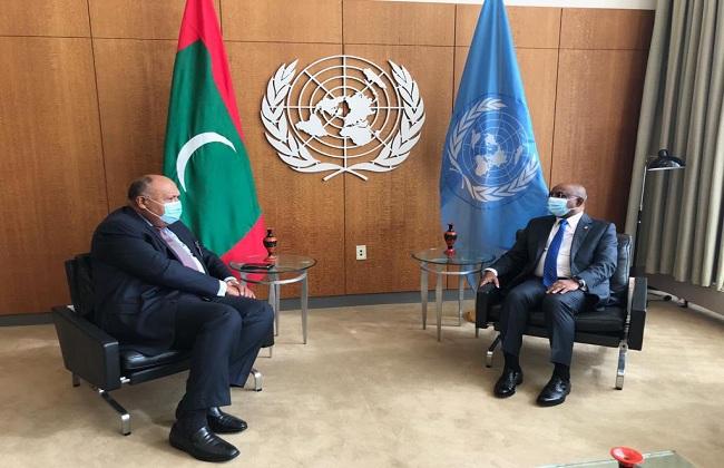 شكرى يبحث مع رئيس الجمعية العامة للأمم المتحدة أجندة الدورة وأولويات عملها