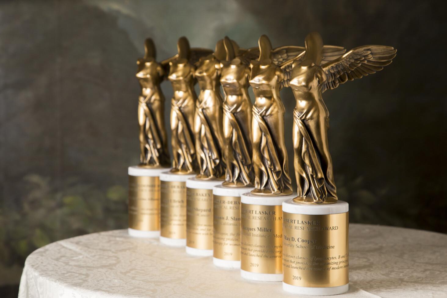 مؤسسة علمية أمريكية تمنح باحثين ألمان وعالمة كيمياء حيوية جوائز مرموقة
