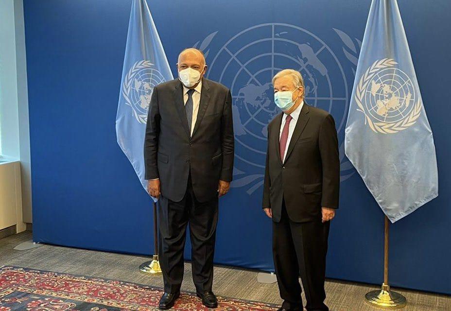 وزير الخارجية مصر تقدر جهود الأمين العام للأمم المتحدة في حفظ السلم والأمن الدوليين |صور