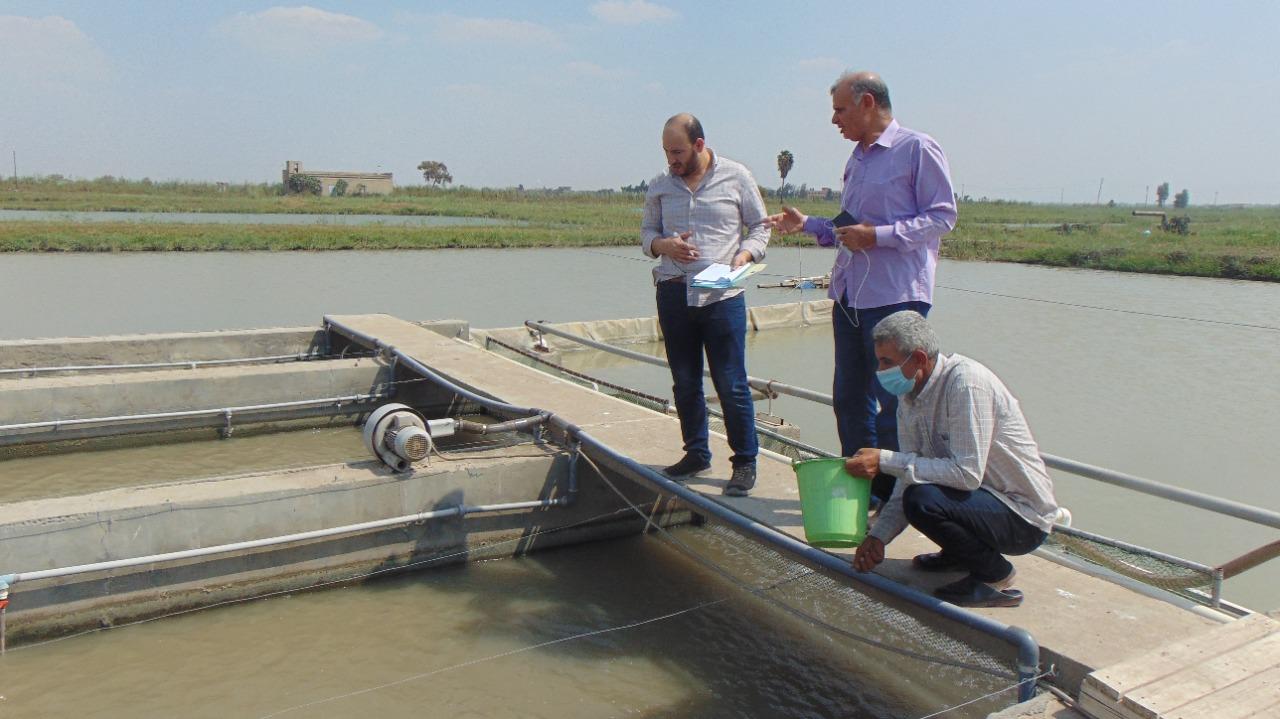 محرر بوابة الأهرام مع الدكتور أحمد نصر الله، مدير المركز الدولي للأسماك بالعباسة